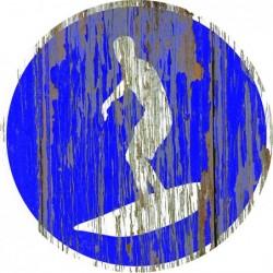 Panneau vintage Longboard autorise