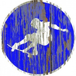 Panneau vintage Skate autorise