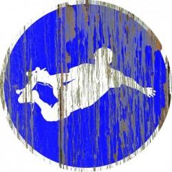 Panneau vintage Skate2 autorise