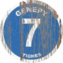 Panneau Bois Vintage Génépy
