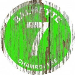 Panneau vintage bois Balmette